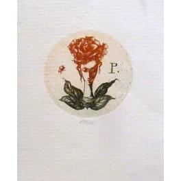 Dívčí hlava s růží