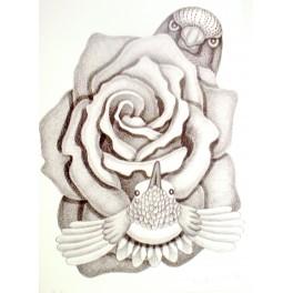 Ptačí hry - růže